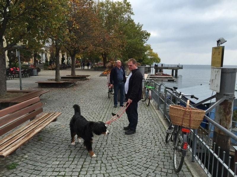 tauchen-bodensee-oktober-2015-31