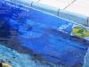 tauchertag-ferdl-cts_23-06-13_0038